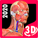 Anatomy Learning - 3D Online Anatomy Atlas
