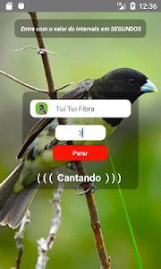 screenshot of Coleiro Fibra Campeão version 1.3.8