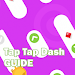 Guide for Tap Tap Dash