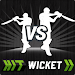 Download Hit Wicket Cricket - Champions League Game 4.1.1 APK