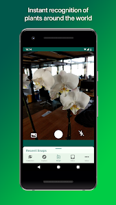 screenshot of PlantSnap - Identify Plants, Flowers, Trees & More version 2.01.1