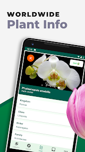 screenshot of PlantSnap - Identify Plants, Flowers, Trees & More version 2.01.8