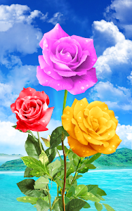 screenshot of Rose. Magic Touch Flowers version 2.2.8